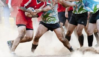 Click to view details and reviews for European Rugby Challenge Cup Final.
