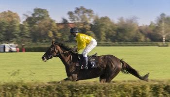 london-horse-show-2016-sabado-tarde
