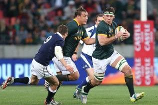 Springboks Rugby