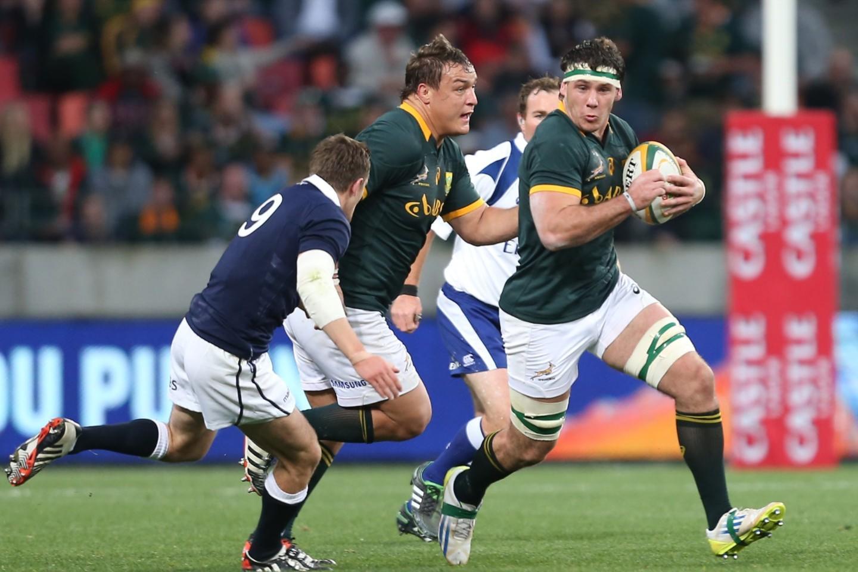Springboks Rugby Tickets