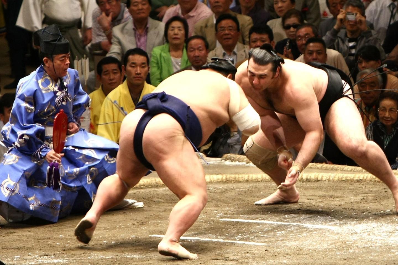 Sumo wrestler dating