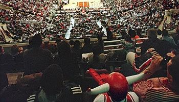 Click to view details and reviews for Chicago Bulls.