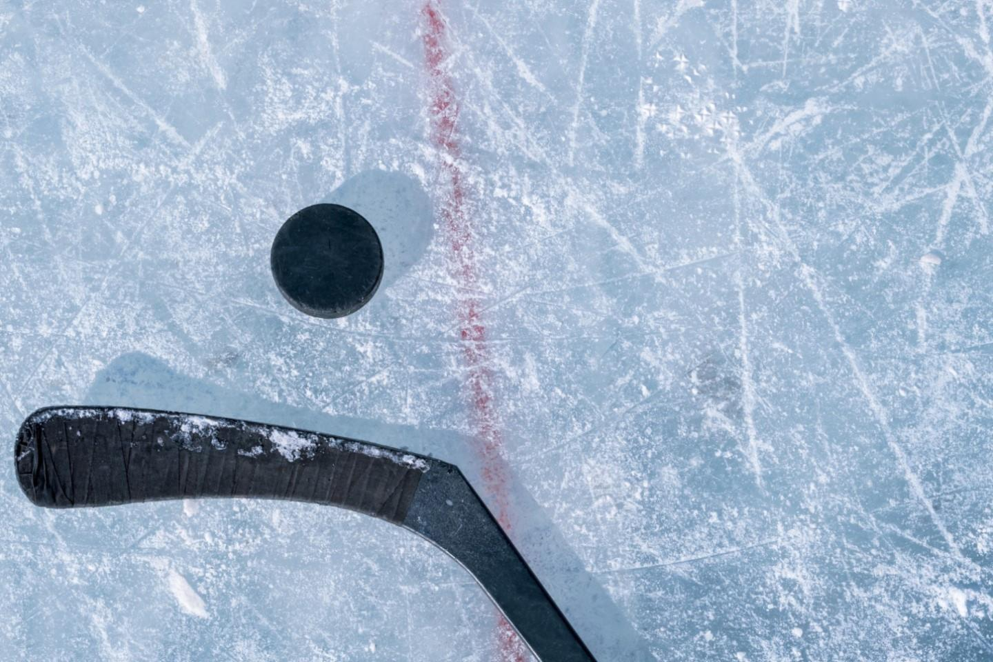 Toronto Maple Leafs Tickets Buy Or Sell Toronto Maple Leafs 2020